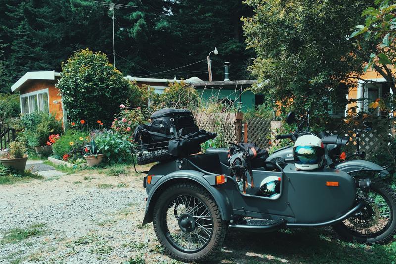 karins trinidad california airbnb redwoods